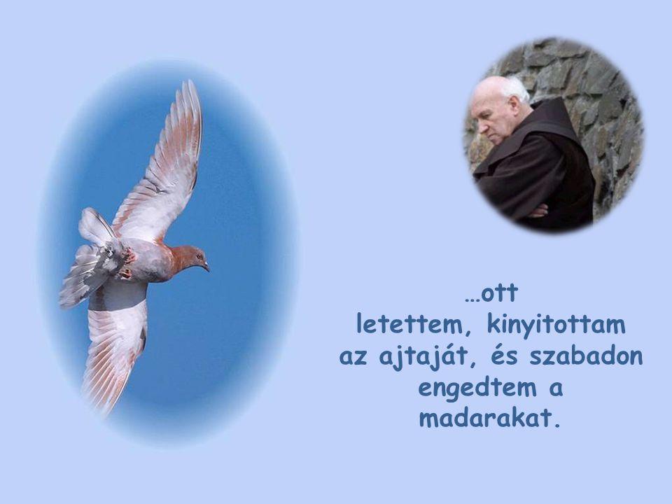 …ott letettem, kinyitottam az ajtaját, és szabadon engedtem a madarakat.