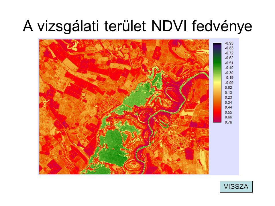 A vizsgálati terület NDVI fedvénye