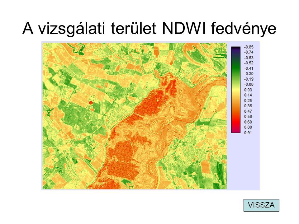 A vizsgálati terület NDWI fedvénye