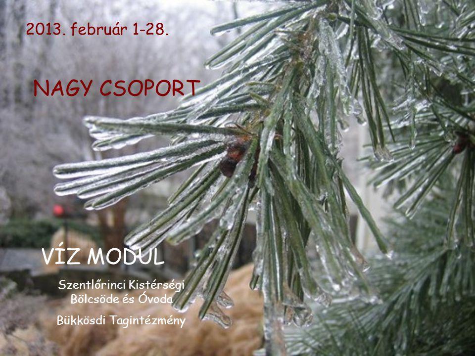 NAGY CSOPORT VÍZ MODUL 2013. február 1-28.