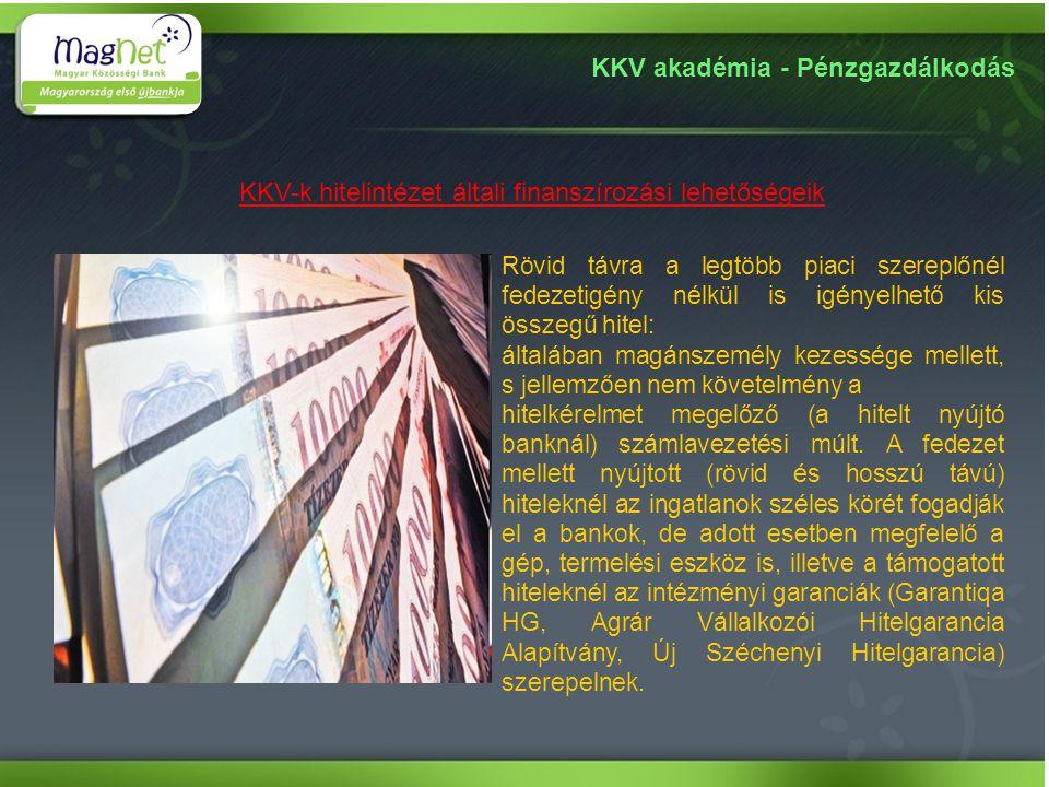 KKV-k hitelintézet általi finanszírozási lehetőségeik
