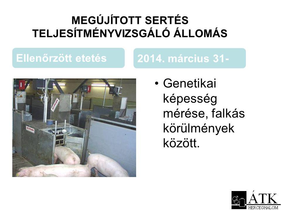MEGÚJÍTOTT SERTÉS TELJESÍTMÉNYVIZSGÁLÓ ÁLLOMÁS