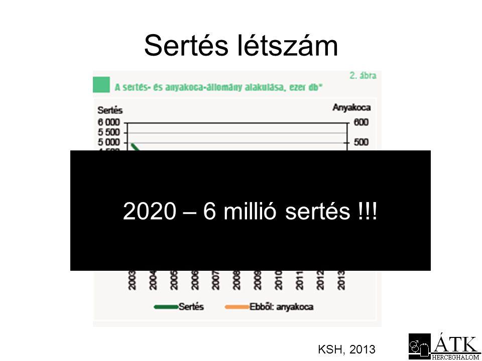 Sertés létszám 2020 – 6 millió sertés !!! KSH, 2013
