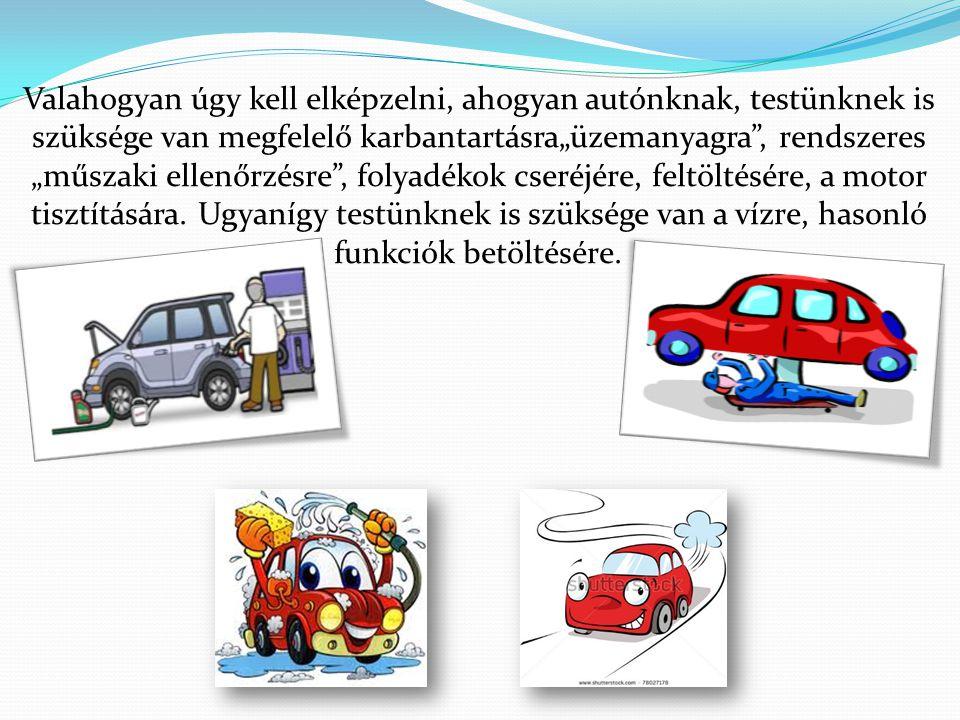 """Valahogyan úgy kell elképzelni, ahogyan autónknak, testünknek is szüksége van megfelelő karbantartásra""""üzemanyagra , rendszeres """"műszaki ellenőrzésre , folyadékok cseréjére, feltöltésére, a motor tisztítására."""