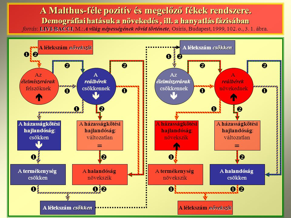 A Malthus-féle pozitív és megelőző fékek rendszere