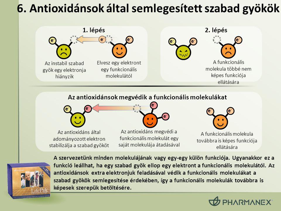 6. Antioxidánsok által semlegesített szabad gyökök