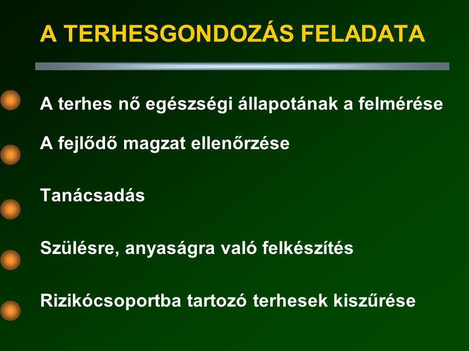 A TERHESGONDOZÁS FELADATA