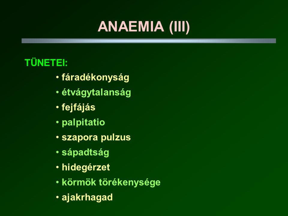 ANAEMIA (III) TÜNETEI: fáradékonyság étvágytalanság fejfájás