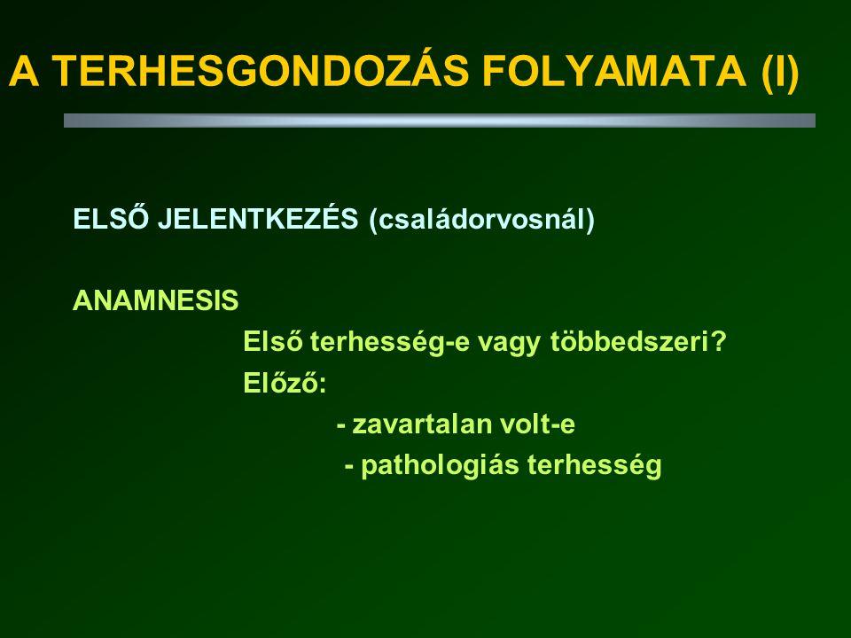 A TERHESGONDOZÁS FOLYAMATA (I)
