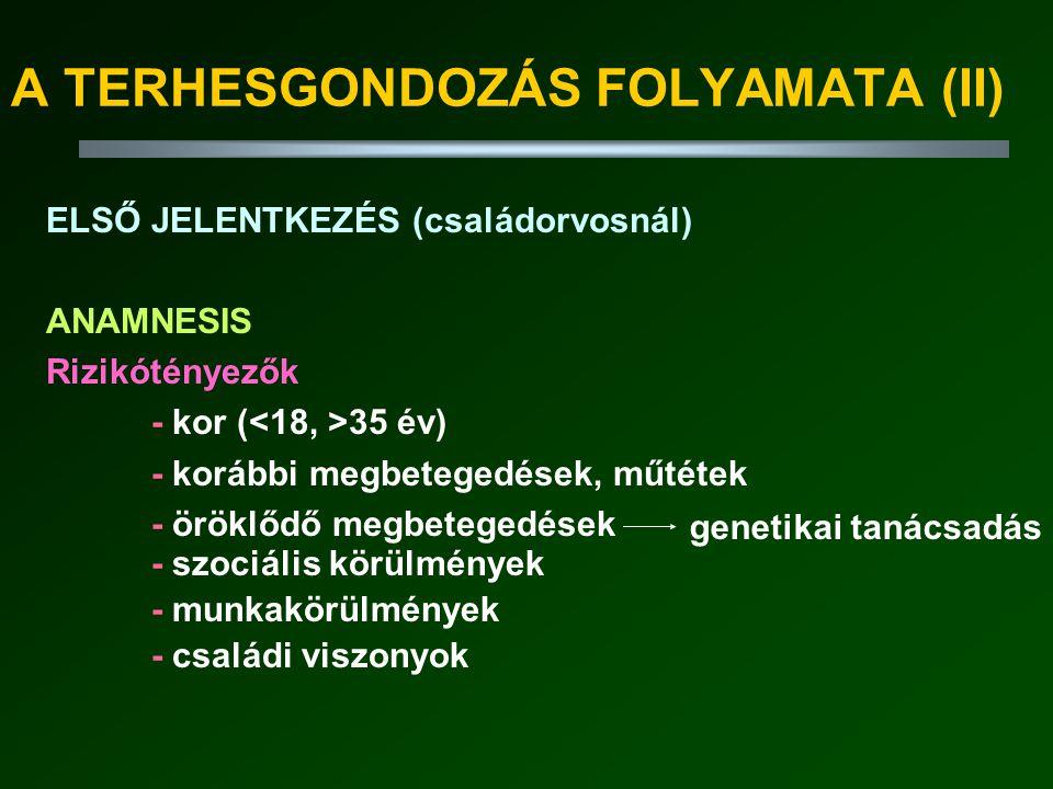 A TERHESGONDOZÁS FOLYAMATA (II)