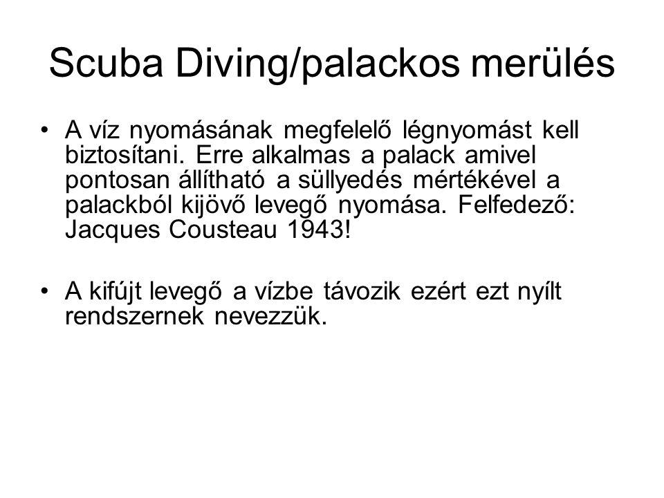 Scuba Diving/palackos merülés