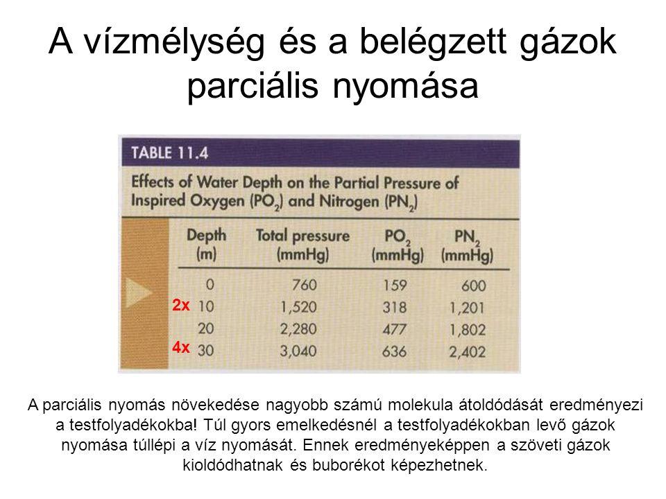A vízmélység és a belégzett gázok parciális nyomása