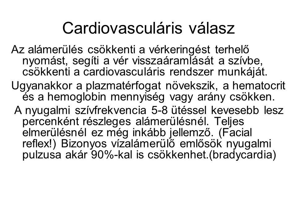 Cardiovasculáris válasz