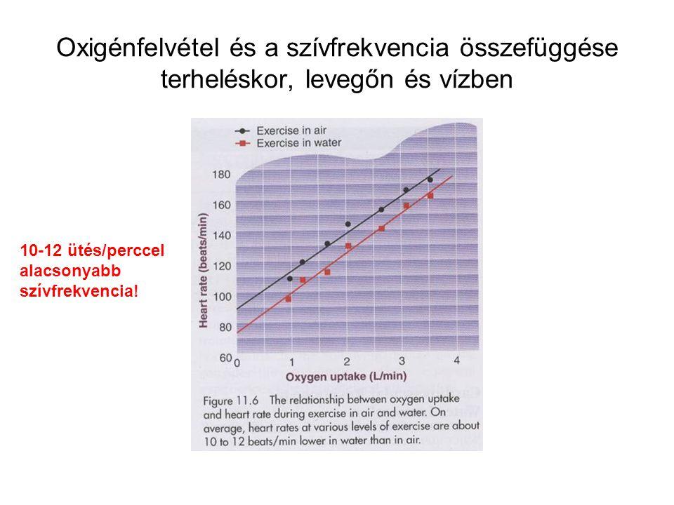 Oxigénfelvétel és a szívfrekvencia összefüggése terheléskor, levegőn és vízben