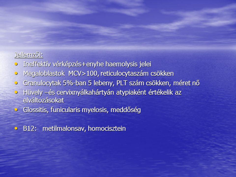 Jellemzői: Ineffektív vérképzés+enyhe haemolysis jelei. Megaloblastok MCV>100, reticulocytaszám csökken.