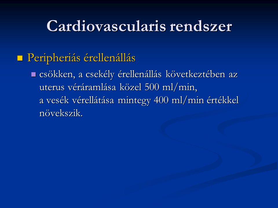 Cardiovascularis rendszer