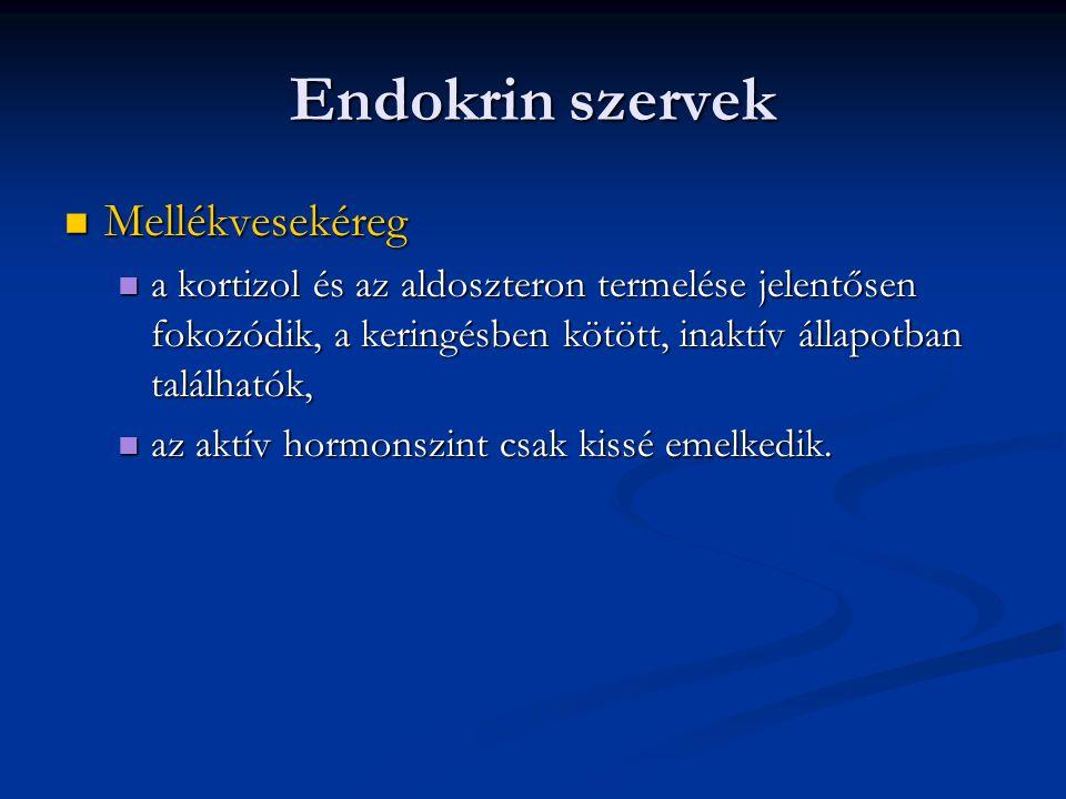 Endokrin szervek Mellékvesekéreg