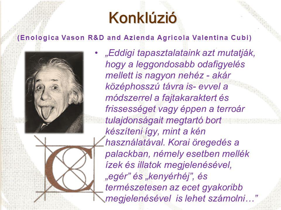 Konklúzió (Enologica Vason R&D and Azienda Agricola Valentina Cubi)