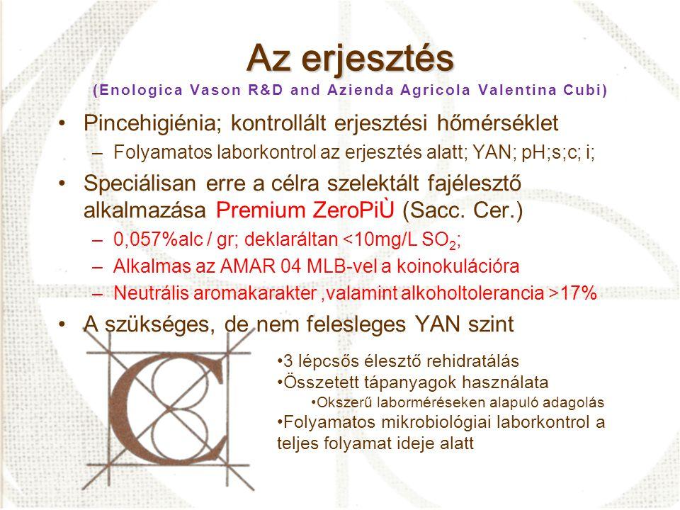 Az erjesztés (Enologica Vason R&D and Azienda Agricola Valentina Cubi)