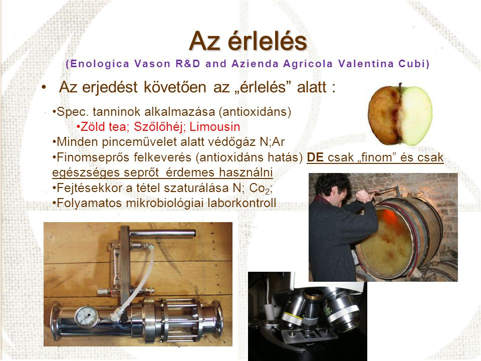 Az érlelés (Enologica Vason R&D and Azienda Agricola Valentina Cubi)