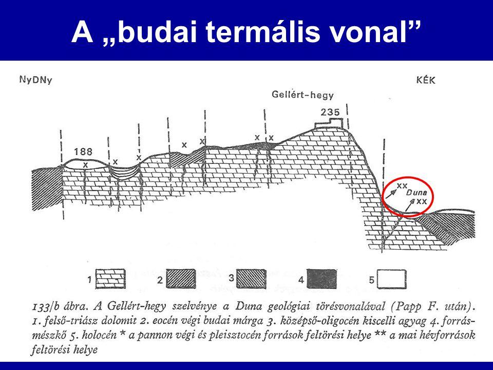 """A """"budai termális vonal"""