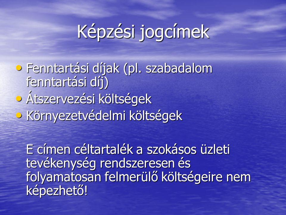 Képzési jogcímek Fenntartási díjak (pl. szabadalom fenntartási díj)