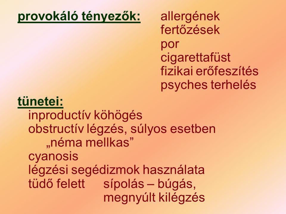 provokáló tényezők:. allergének. fertőzések. por. cigarettafüst