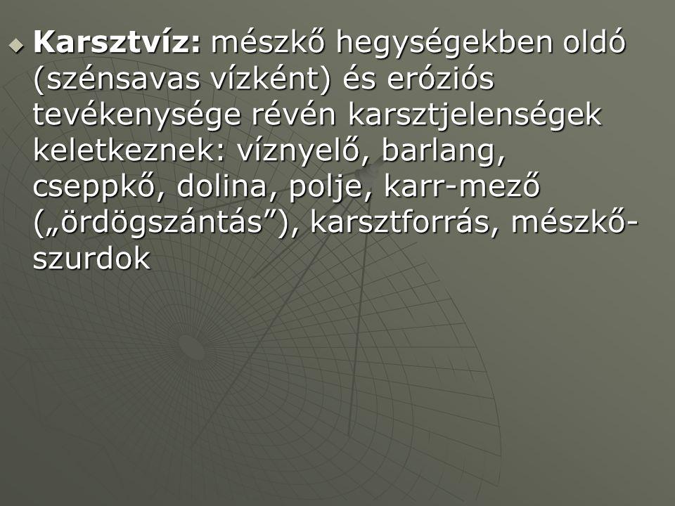 """Karsztvíz: mészkő hegységekben oldó (szénsavas vízként) és eróziós tevékenysége révén karsztjelenségek keletkeznek: víznyelő, barlang, cseppkő, dolina, polje, karr-mező (""""ördögszántás ), karsztforrás, mészkő-szurdok"""