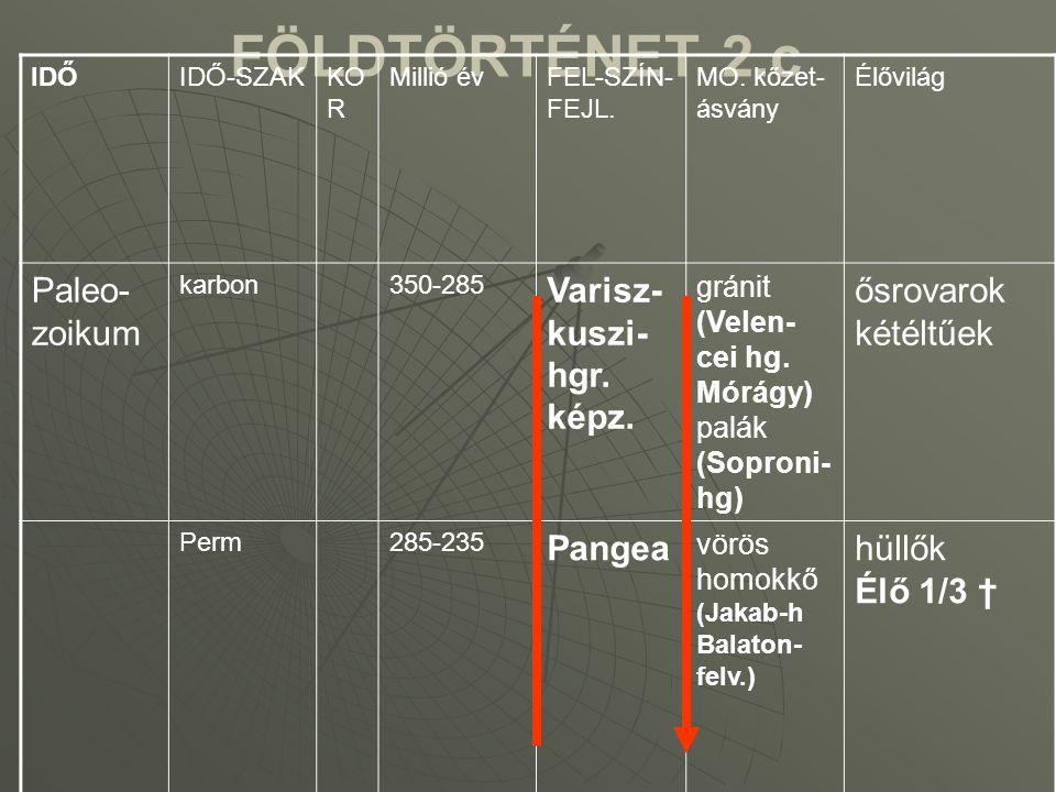FÖLDTÖRTÉNET 2.c Paleo-zoikum Varisz-kuszi-hgr. képz. ősrovarok