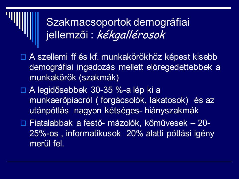 Szakmacsoportok demográfiai jellemzői : kékgallérosok