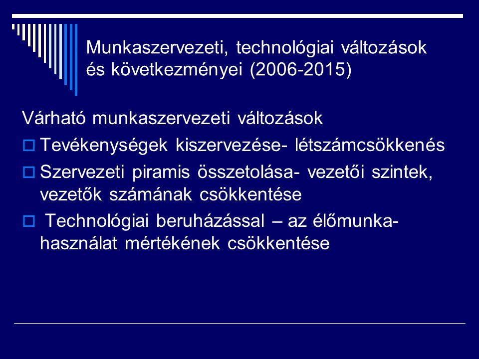 Munkaszervezeti, technológiai változások és következményei (2006-2015)