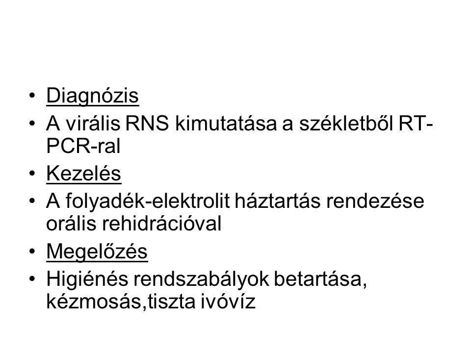 Diagnózis A virális RNS kimutatása a székletből RT-PCR-ral. Kezelés. A folyadék-elektrolit háztartás rendezése orális rehidrációval.