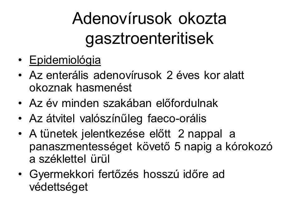 Adenovírusok okozta gasztroenteritisek