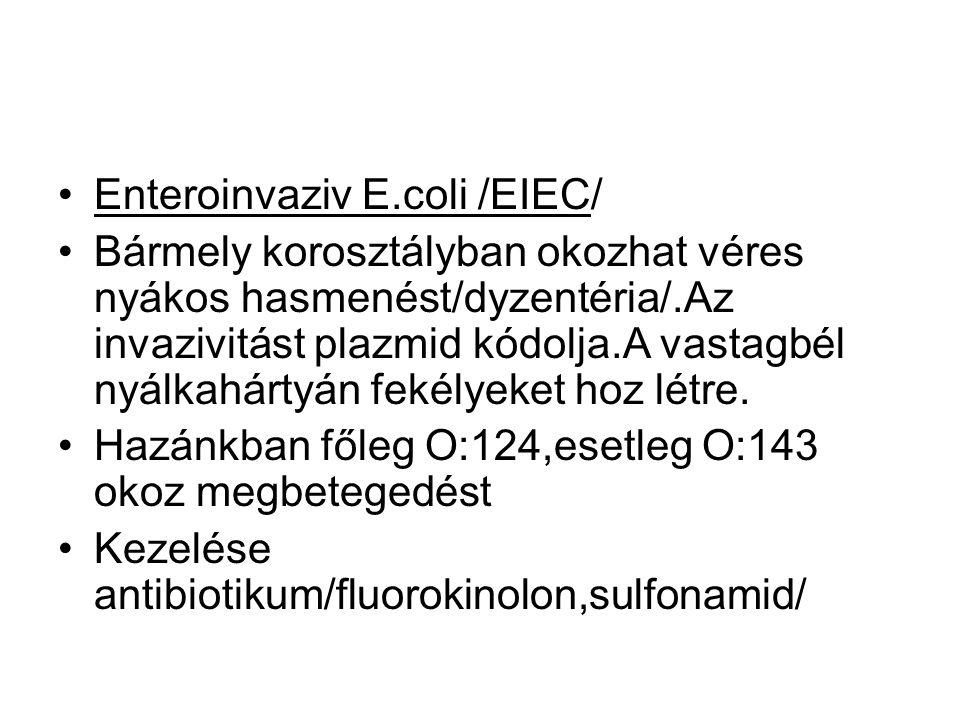 Enteroinvaziv E.coli /EIEC/