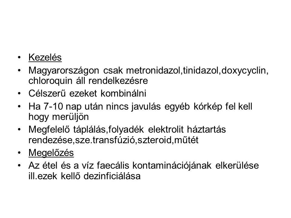 Kezelés Magyarországon csak metronidazol,tinidazol,doxycyclin, chloroquin áll rendelkezésre.