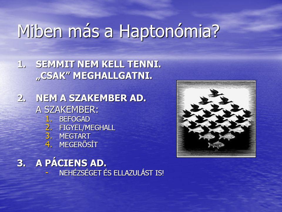 """Miben más a Haptonómia 1. SEMMIT NEM KELL TENNI. """"CSAK MEGHALLGATNI."""