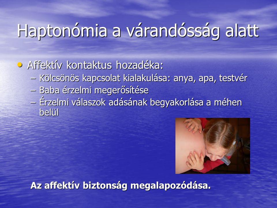 Haptonómia a várandósság alatt