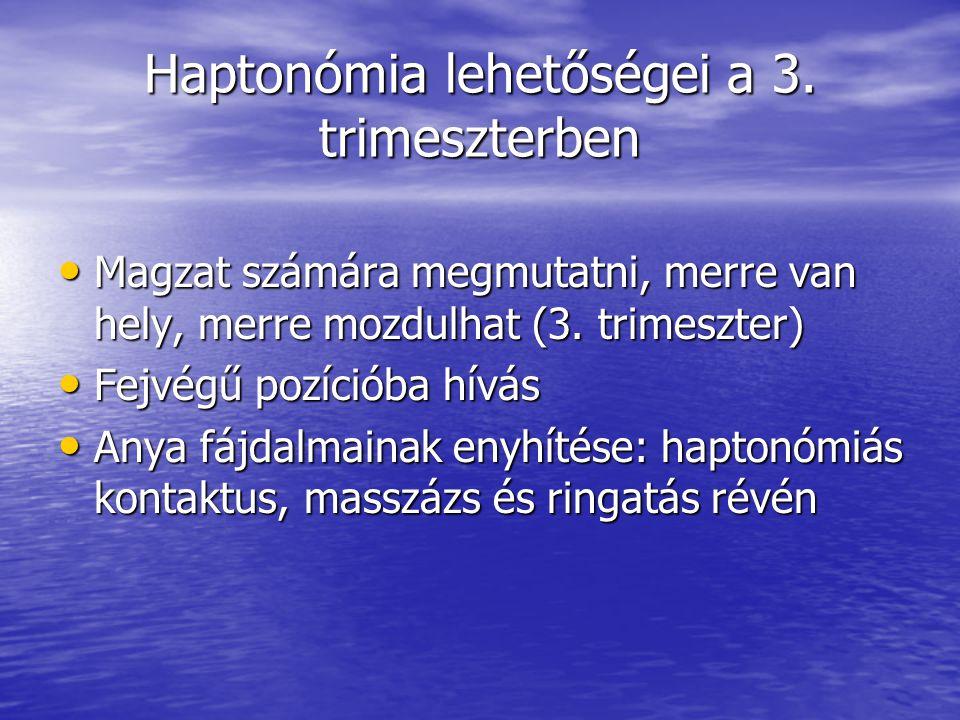 Haptonómia lehetőségei a 3. trimeszterben