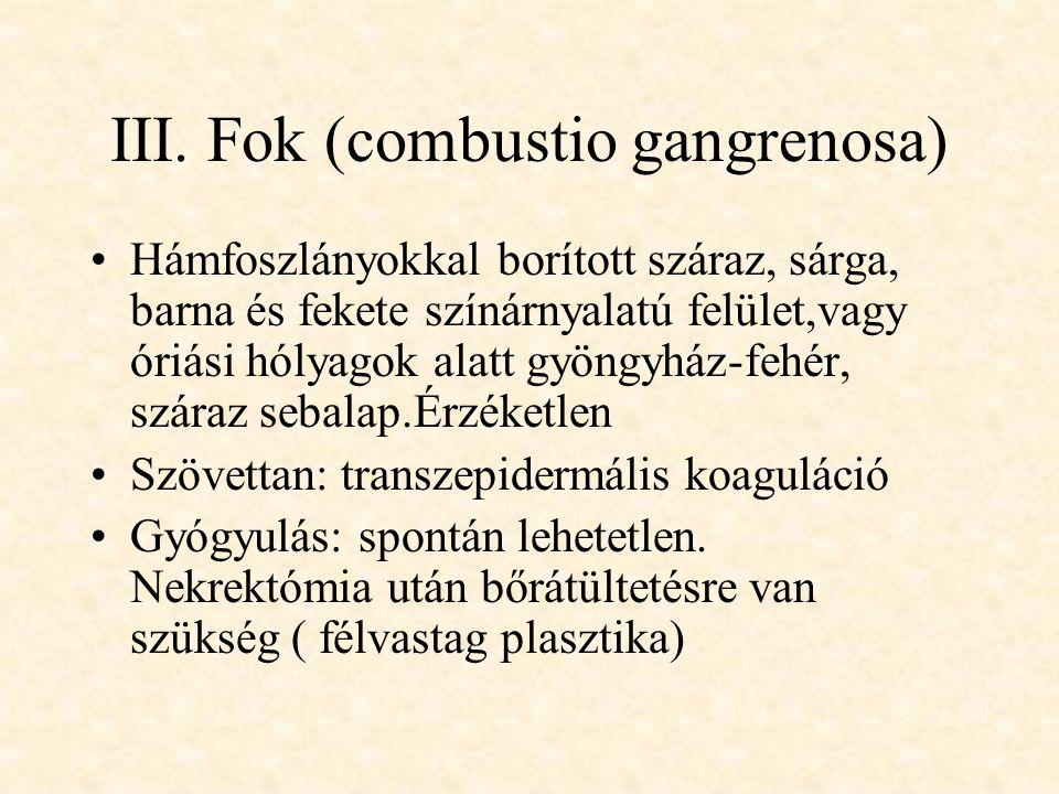 III. Fok (combustio gangrenosa)
