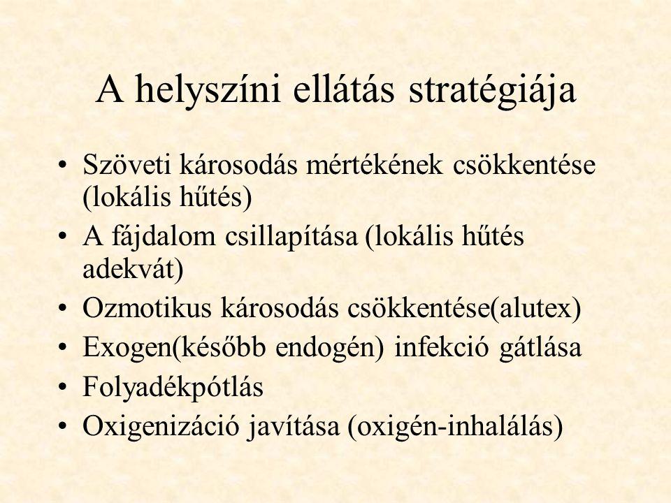 A helyszíni ellátás stratégiája