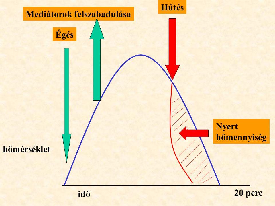 Hűtés Mediátorok felszabadulása Égés Nyert hőmennyiség hőmérséklet idő 20 perc