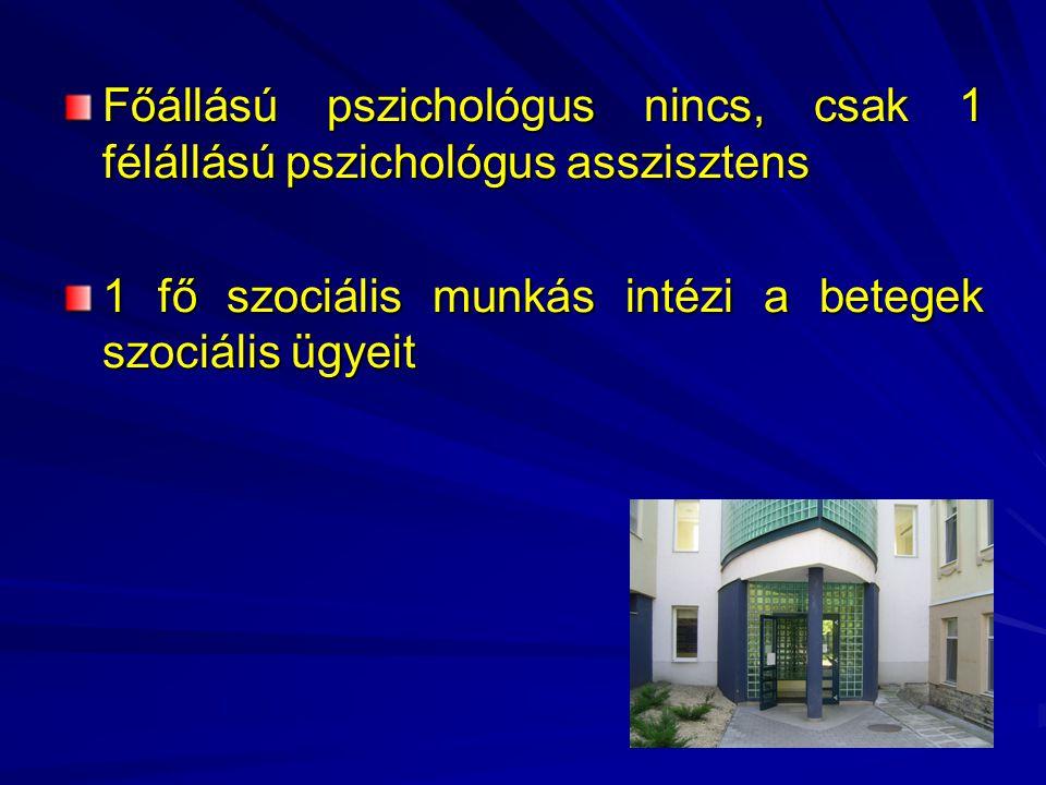 Főállású pszichológus nincs, csak 1 félállású pszichológus asszisztens