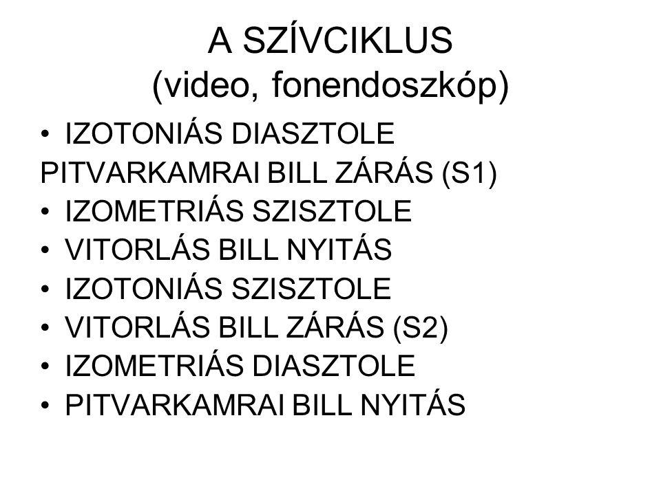 A SZÍVCIKLUS (video, fonendoszkóp)