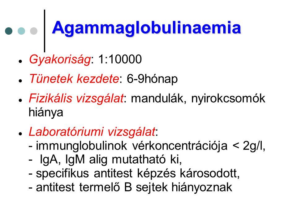 Agammaglobulinaemia Gyakoriság: 1:10000 Tünetek kezdete: 6-9hónap