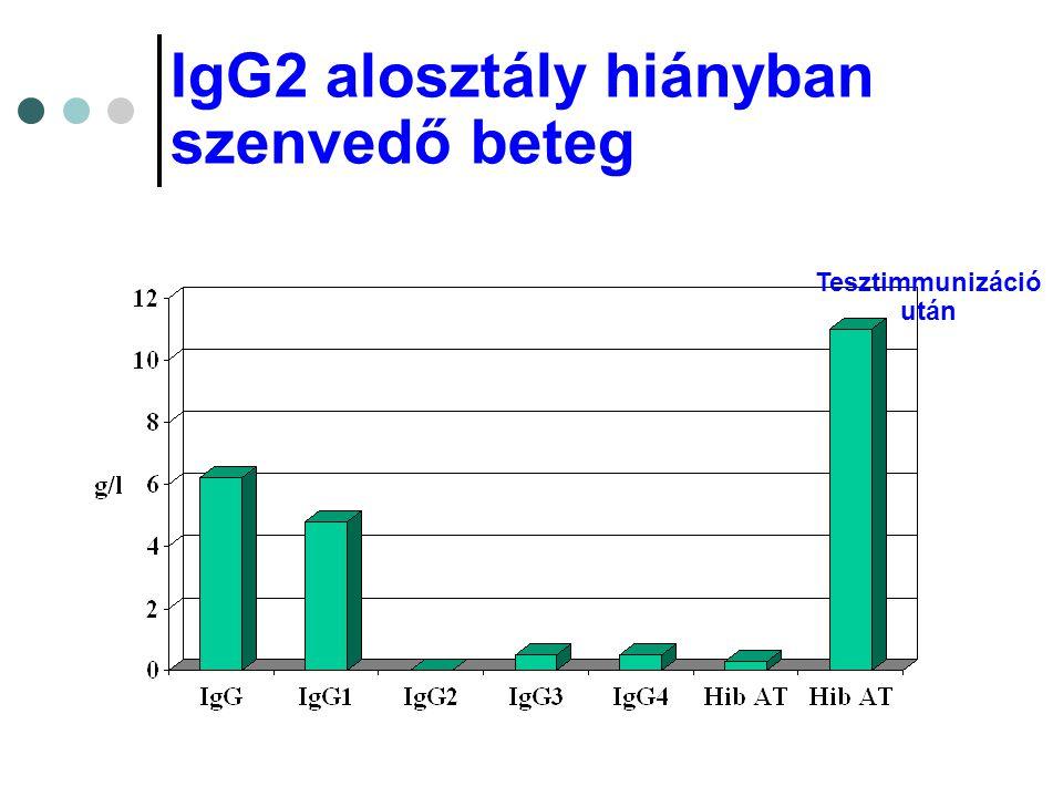 IgG2 alosztály hiányban szenvedő beteg