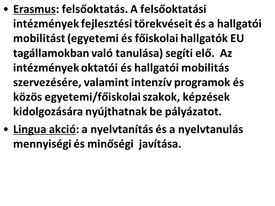 Erasmus: felsőoktatás