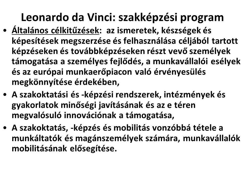 Leonardo da Vinci: szakképzési program