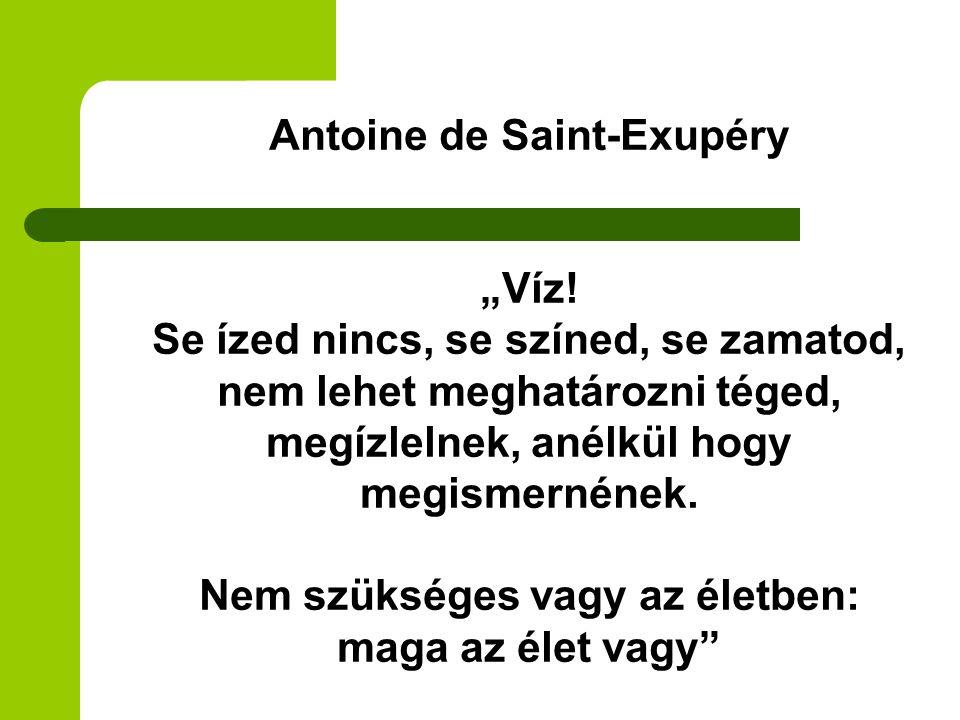 "Antoine de Saint-Exupéry ""Víz"