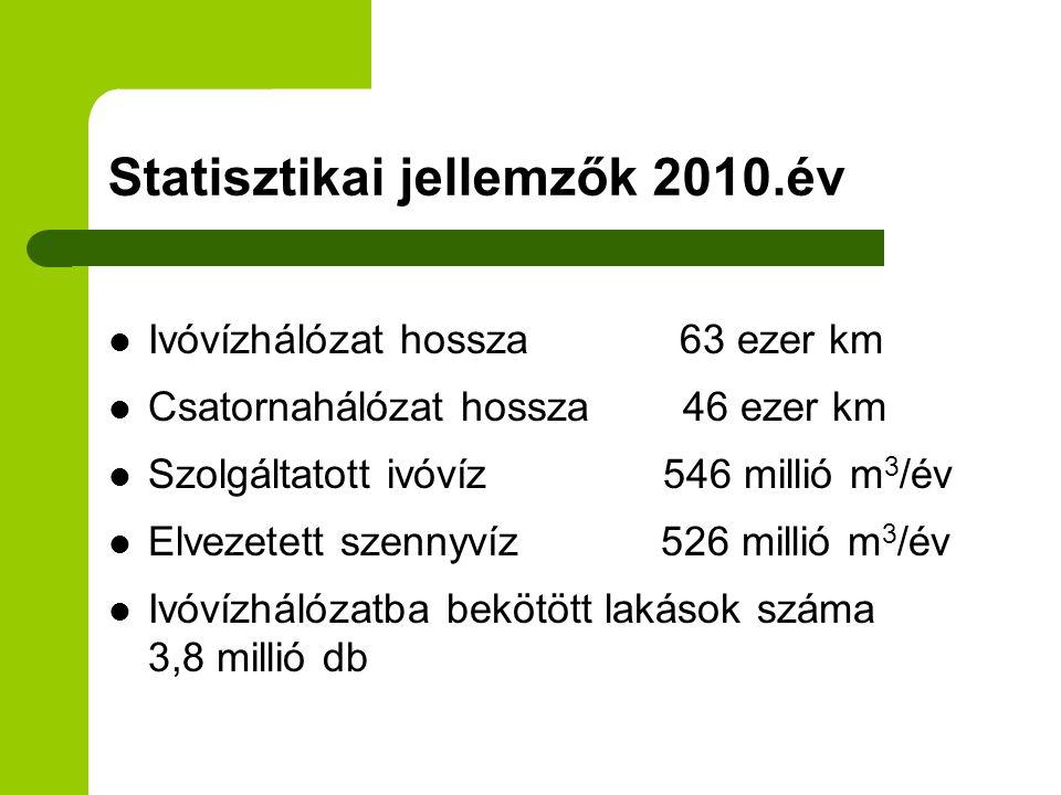 Statisztikai jellemzők 2010.év