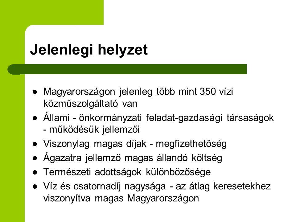 Jelenlegi helyzet Magyarországon jelenleg több mint 350 vízi közműszolgáltató van.